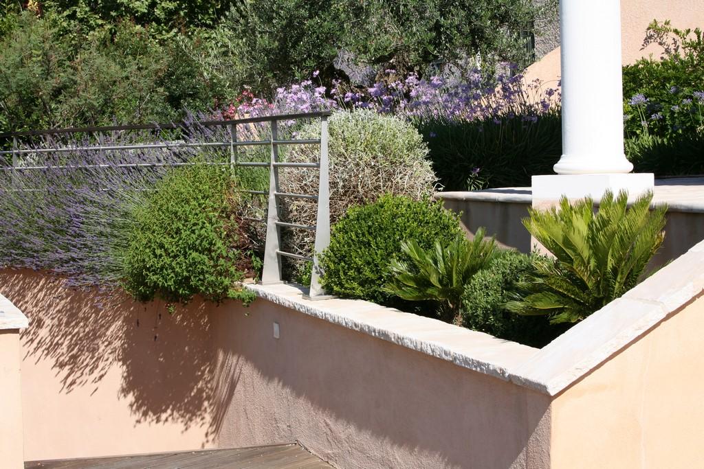 Conception et r alisation d un jardin naturel for Conception jardin mediterraneen